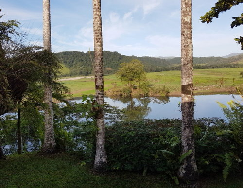 View of Daintree River from Gracilenta Suite